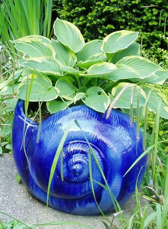 Blue snail pot photo