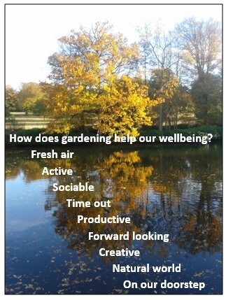 Gardening wellbeing photo