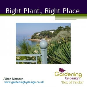 Right plant, right place product image