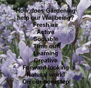 Gardening Wellbeing meme