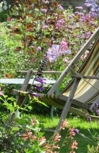 Summer garden photo